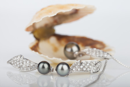 perl: Shell with pearls, isolated on white