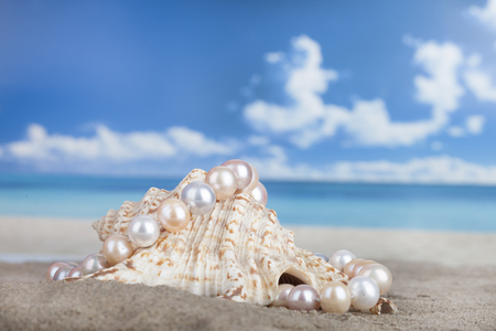 perlas: Pearl necklace on the beach in the shell as a symbol of summer vacation at sea Foto de archivo