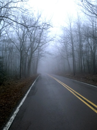 Taken while out on my long run in the fog.