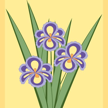 fragrant bouquet: Vector illustration of bouquet of iris flowers. Card of purple abstract flowers with leaves on the soft yellow background.