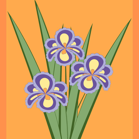 fragrant bouquet: Vector illustration of bouquet of iris flowers. Card of purple abstract flowers with leaves on the orange background.