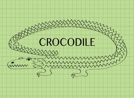 alligator cartoon: Vector illustration of cartoon crocodile on green background. Alligator symbol, crocodile icon. Doodle alligator. Crocodile logo design. Place for text. Illustration