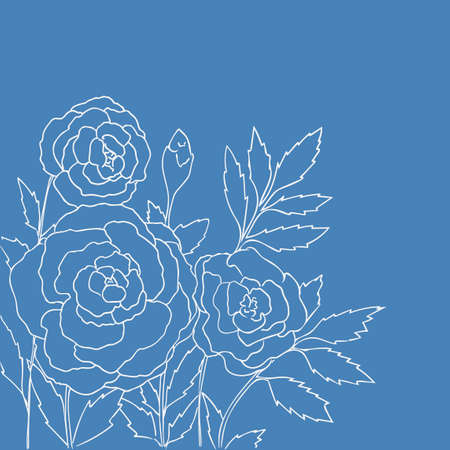 peon: Beautiful roses isolated on blue background. Hand drawn vector illustration with flowers. Romantic retro floral card. Romantic delicate bouquet. Element for design. Contour lines and strokes. Illustration
