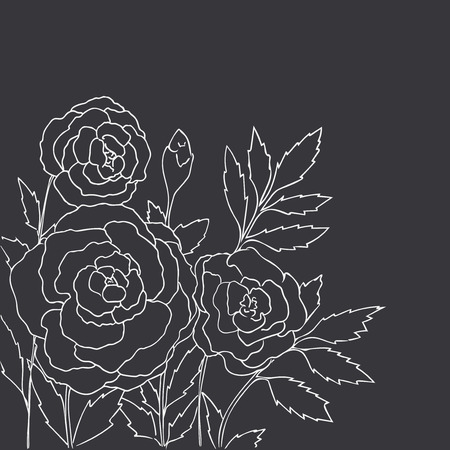 peon: Beautiful roses isolated on black background. Hand drawn vector illustration with flowers. Retro floral card. Romantic delicate bouquet. Element for design. Contour lines. Chalkboard imitation. Illustration