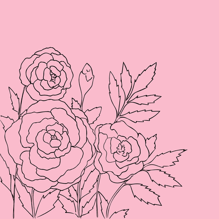 peon: Beautiful roses isolated on pink background. Hand drawn vector illustration with flowers. P Retro floral card. Romantic delicate bouquet. Element for design. Contour lines and strokes.