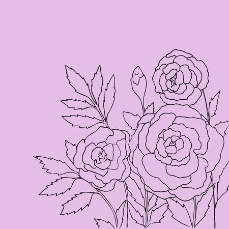 peon: Beautiful roses isolated on light purple background. Hand drawn vector illustration with flowers. Lilac retro floral card. Romantic delicate bouquet. Element for design. Contour lines and strokes.