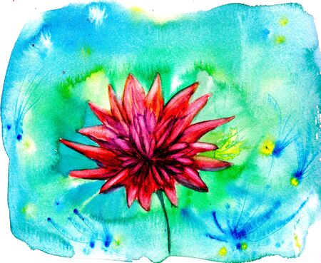 aster: Red aster flower. Watercolor floral illustration. Summer background. Abstract wallpaper. Hand drawn bright pink chrysanthemum. For wedding invitations, birthday, mothers day, greeting cards. Stock Photo