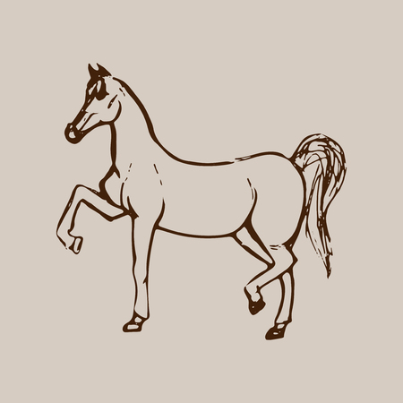 Hand drawn sketch of horse. Brown line drawing isolated on beige background. Vector animal illustration.