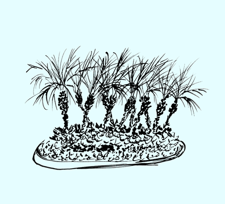 Tropical palm trees isolated on light blue background. Illustration of coconut palms group. Black silhouettes. Hand drawn sketch.