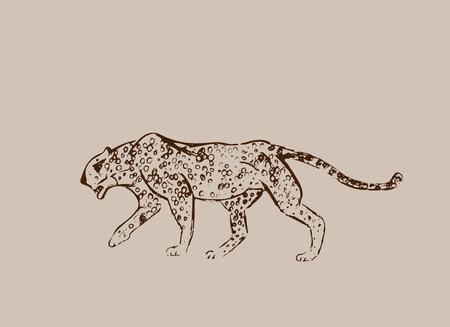 Cheetah. Hand drawn ink sketch. Horizontal drawing. Vector engraving. Predator line art. Brown line illustration isolated on light beige background. Safari concept.
