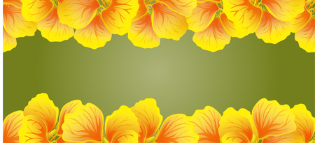 Bright Nasturtium Seamless border. Yellow flowers. Beautiful Horizontal banner. Green background. Card, invitation, poster, greeting design. Vector illustration.Exotic template.Decorative floral frame