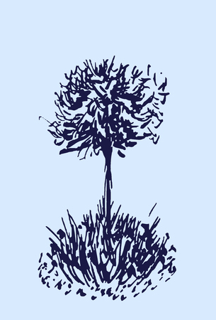 Tree vector sketch.Vintage illustration, engraved style. Hand drawn ink. Line drawing Isolated on light background. For landscape, park, outdoors design. Blue colors.