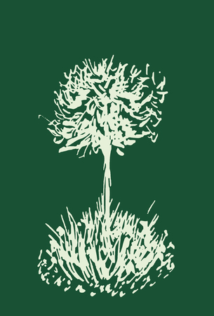 Tree vector sketch.Vintage illustration, engraved style. Hand drawn ink. Line drawing Isolated on green background. For landscape, park, outdoors design.