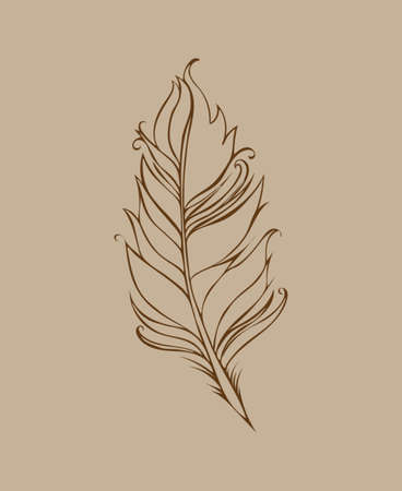Feather isolated on beige background. Vector illustration. Brown Lined drawing