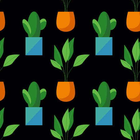 Seamless pattern of cactus and ficus in pots isolated on black background. Simple cartoon style. Flat design. House plant illustration