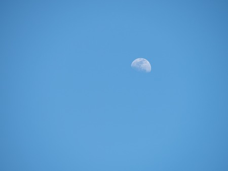 Partial moon appearing in mid-afternoon against a clear blue sky