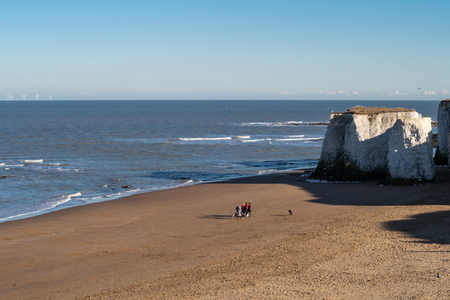 Sunny evening on the Kent coastline, a family walking on the beach with dogs Stock Photo