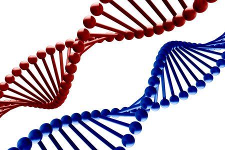 DNA - 3d render photo