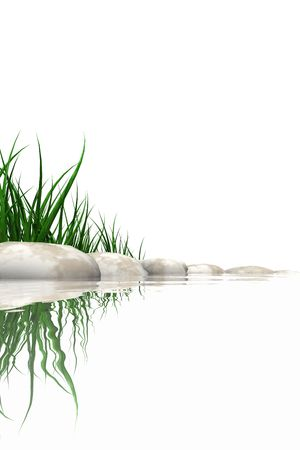 waters  edge: Stones & grass at waters edge isolated on white