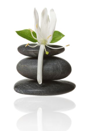 holistic therapy: Stacked stones with flower Stock Photo