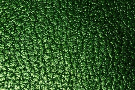leathery: Green leathery texture
