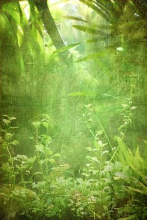 grooves: Grunge plants background