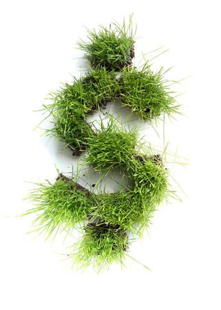 Symbols made of grass - dollar sign photo