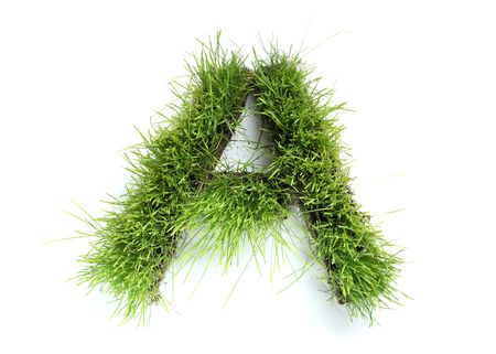 Letters made of grass - A Stock Photo