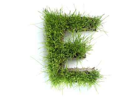 grass font: Letters made of grass - E