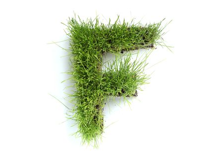 Letters made of grass - F Stock Photo
