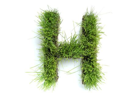 Letters made of grass - H Imagens