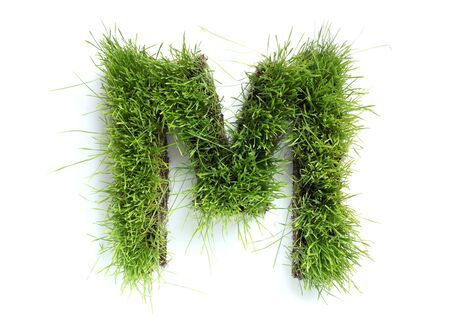 Letters made of grass - M