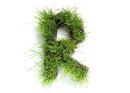 Brieven van grass - R Stockfoto