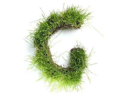 Letters made of grass - G