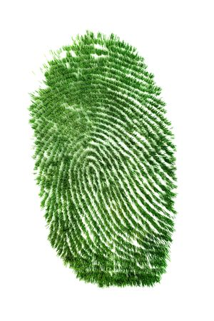 Fingerprint of grass photo