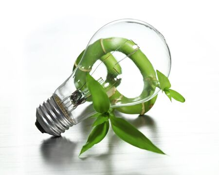 Light bulb on bamboo photo