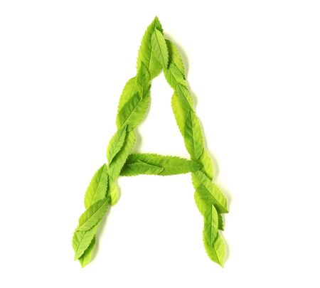 uppercase: Uppercase letters made of leaves