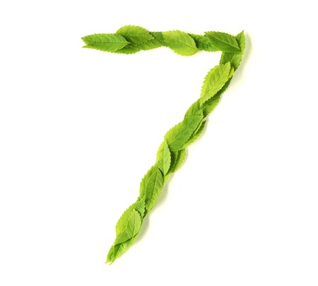 Numbers made of leaves Stock Photo - 7267334