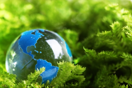 protect: Earth marble in plant Stock Photo