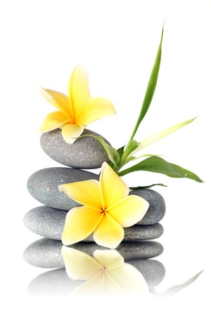 zen flower:  Yellow flowers on stacked stones - isolated on white