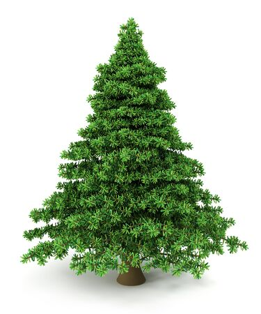 christmastree: Christmas Tree Stock Photo