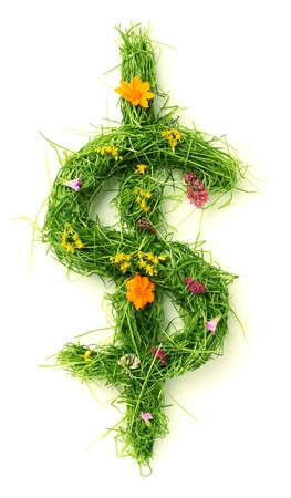 Dollar sign made of flowers and grass isolated on white photo