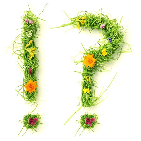 grass font: Question mark & exclamation mark made of flowers and grass isolated on white