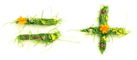 Symbols made of flowers and grass isolated on white photo