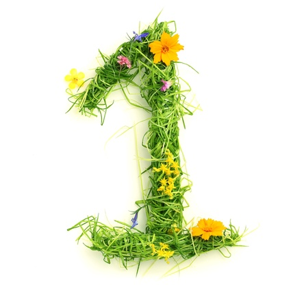 alphabet number: Numbers made of flowers and grass isolated on white
