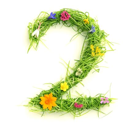 Numbers made of flowers and grass isolated on white Stock Photo - 9448684