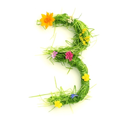 Numbers made of flowers and grass isolated on white Stock Photo - 9448106