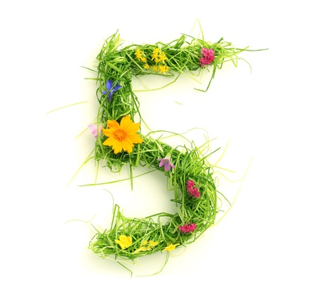 grass font: Numbers made of flowers and grass isolated on white