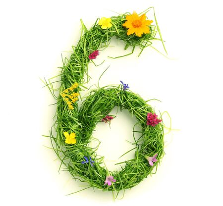 Numbers made of flowers and grass isolated on white photo
