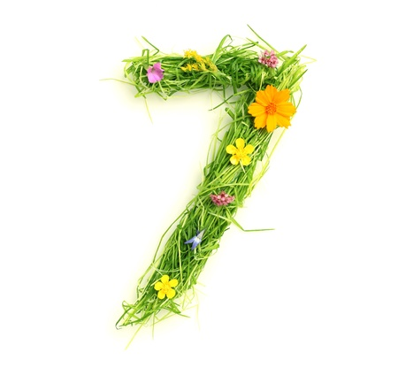 Numbers made of flowers and grass isolated on white Stock Photo - 9448104